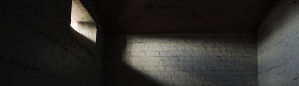 Carcere duro ex art. 41bis ordinamento penitenziario: costituzionalmente illegittimo il divieto di cuocere cibi (Corte Costituzionale – Sent. 186/2018)
